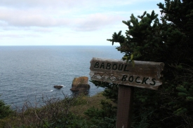 The Baboul (the root of the name Bay Bulls?) Rocks lookout.